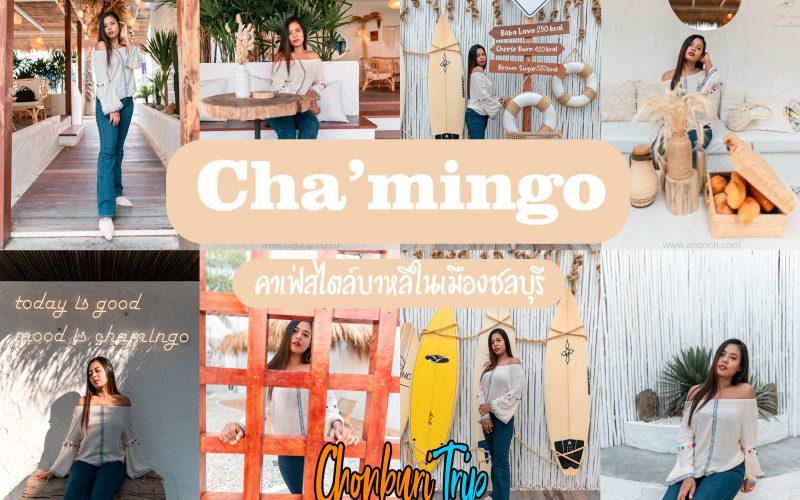 Chamingo ชลบุรี