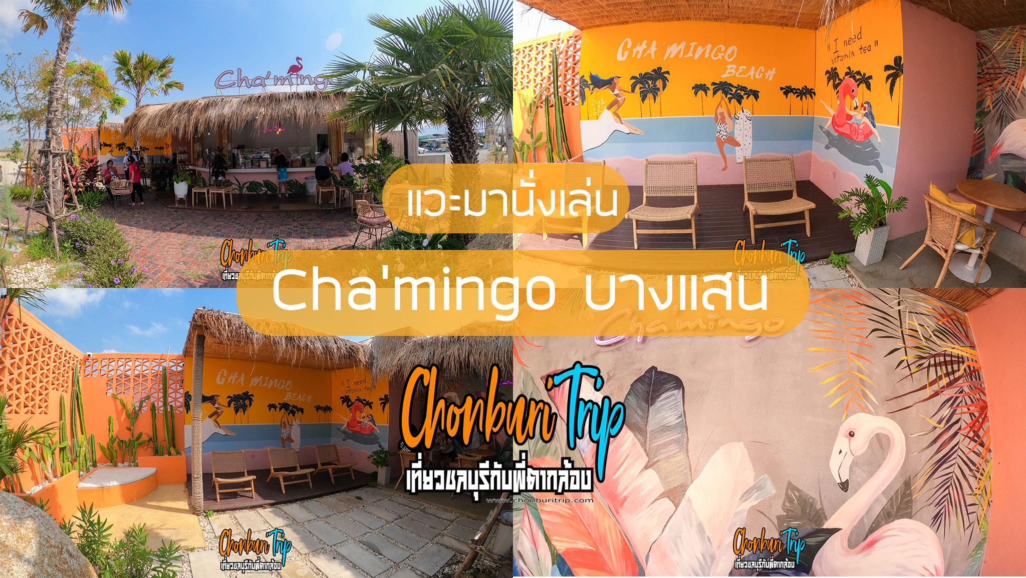 Chamingo-บางแสน