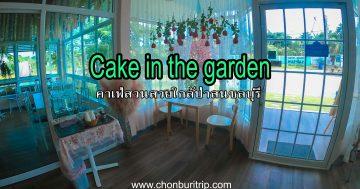 Cake-in-the-garden