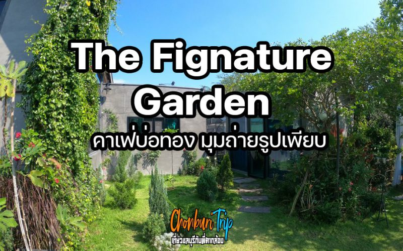 The-Fignature-Garden-คาเฟ่บ่อทอง